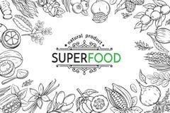 Ícones do superfood do esboço ajustados Imagem de Stock