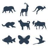 Ícones dos animais ajustados no fundo branco Fotos de Stock