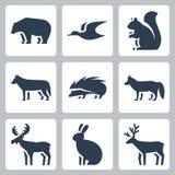 Ícones dos animais da floresta do vetor Foto de Stock Royalty Free