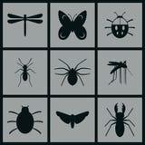 Ícones dos insetos Imagens de Stock Royalty Free