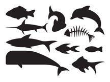 Ícones dos peixes ajustados Imagem de Stock Royalty Free