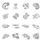 Ícones dos répteis e dos anfíbios ajustados Linha projeto ilustração stock