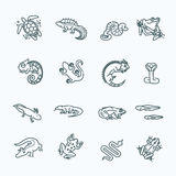 Ícones dos répteis e dos anfíbios ajustados Linha projeto ilustração do vetor