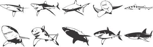 Ícones dos tubarões Fotos de Stock
