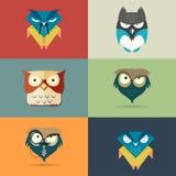 Ícones estilizados bonitos ajustados dos desenhos animados das corujas Fotos de Stock Royalty Free