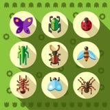 Ícones lisos coloridos do erro do inseto Fotos de Stock