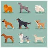 Ícones lisos do cão ajustados Foto de Stock
