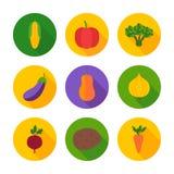 Ícones lisos do círculo dos vegetais Foto de Stock Royalty Free