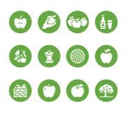 Ícones lisos do glyph das maçãs Colheita de Apple, festival da colheita do outono, ilustrações da cidra do fruto do ofício Sinais ilustração do vetor