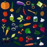 Ícones lisos dos vegetais maduros naturais Imagens de Stock Royalty Free