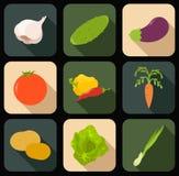 Ícones lisos dos vegetqables Imagens de Stock Royalty Free