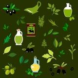 Ícones lisos verde-oliva dos frutos e das ervas Foto de Stock Royalty Free