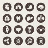 Ícones médicos. Órgãos humanos ilustração stock