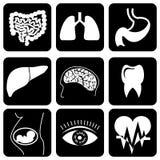 Ícones médicos Fotos de Stock Royalty Free