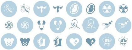 Ícones médicos da especialidade ilustração do vetor