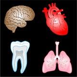 Ícones médicos do vetor Fotografia de Stock Royalty Free