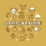 Ícones mínimos do esboço da agricultura Imagem de Stock