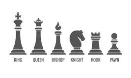 Ícones nomeados do vetor da parte de xadrez ajustados ilustração royalty free