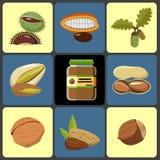 Ícones Nuts ajustados Fotografia de Stock Royalty Free