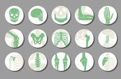 Ícones ortopédicos e da espinha do vetor ilustração do vetor