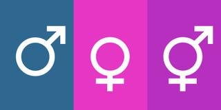 Ícones para o homem, a mulher e o transgender ilustração royalty free