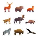 Ícones poligonais do norte dos animais selvagens ajustados Imagem de Stock Royalty Free