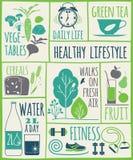 Ícones saudáveis do estilo de vida ajustados Fotos de Stock Royalty Free