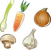 Ícones vegetais ilustração royalty free