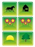 Ícones verdes ilustração do vetor