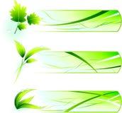 Ícones verdes da natureza com bandeiras Imagem de Stock Royalty Free