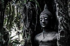 Ídolo da Buda na árvore velha Foto de Stock Royalty Free