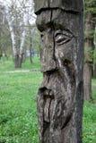 Ídolo de madera eslavo Fotografía de archivo libre de regalías