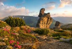 Ídolo de pedra nas montanhas Fotos de Stock Royalty Free