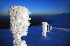 Ídolo do gelo nas montanhas Carpathian imagem de stock