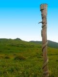Ídolo pagano de madera Fotografía de archivo