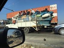 Índia despreocupada Foto de Stock