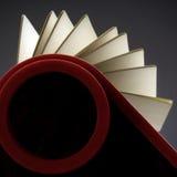 Índice del balanceo Imágenes de archivo libres de regalías