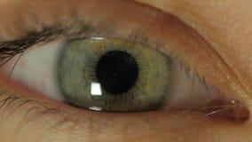 Íris ascendente próxima do olho humano do extremo no vídeo de 4K UHD Contratar da íris do olho humano Ascendente próximo do extre video estoque