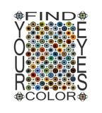 Íris colorida olho Encontre sua cor dos olhos ilustração stock