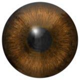 A íris do olho gerada contrata a textura Fotografia de Stock Royalty Free