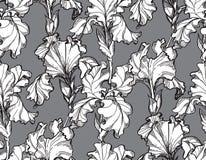 Íris floral da flor da ilustração do vetor Foto de Stock Royalty Free