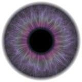 Íris roxa do olho ilustração do vetor