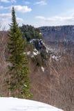 Άγριο δάσος στα βουνά Laurentides σε Val Δαβίδ στοκ εικόνες