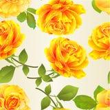 Άνευ ραφής σύστασης λουλουδιών κίτρινος κλαδίσκος υποβάθρου τριαντάφυλλων εορταστικός με την εκλεκτής ποιότητας διανυσματική απει ελεύθερη απεικόνιση δικαιώματος