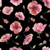 Άνευ ραφής σχέδιο με τα λουλούδια της παπαρούνας Χρωματισμένη χέρι απεικόνιση watercolor απεικόνιση αποθεμάτων