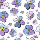 Άνευ ραφής σχέδιο με τα λουλούδια miosotis που απομονώνεται στο άσπρο υπόβαθρο στοκ εικόνες