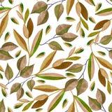 Άνευ ραφής σχέδιο με τους κλάδους watercolor διανυσματική απεικόνιση
