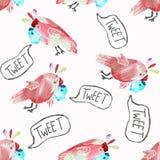Άνευ ραφής σχέδιο με τους χαριτωμένους παπαγάλους διανυσματική απεικόνιση