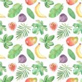 Άνευ ραφής σχέδιο Watercolor με τα φρούτα, φυτά, φύλλα, λουλούδια της Αφρικής διανυσματική απεικόνιση