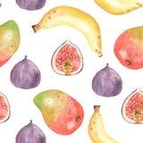 Άνευ ραφής σχέδιο Watercolor με τα φρούτα, φυτά, φύλλα, λουλούδια της Αφρικής ελεύθερη απεικόνιση δικαιώματος